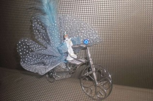 Model : Bisiklette
