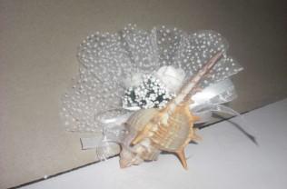 Model : denizürünümagnetli